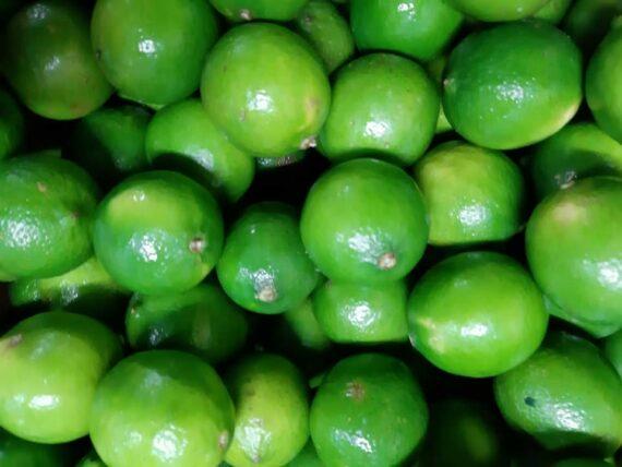 Citrons verts locaux - Frecinette