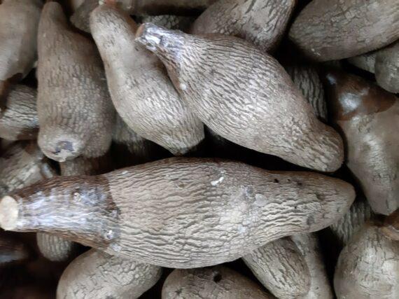 Couscouche - Frecinette
